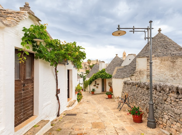 Красочная улица деревни альберобелло. здания трулли и виноградная лоза, апулия, италия