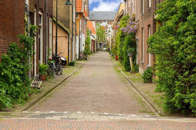 Colorful street in old town  of delft, holland