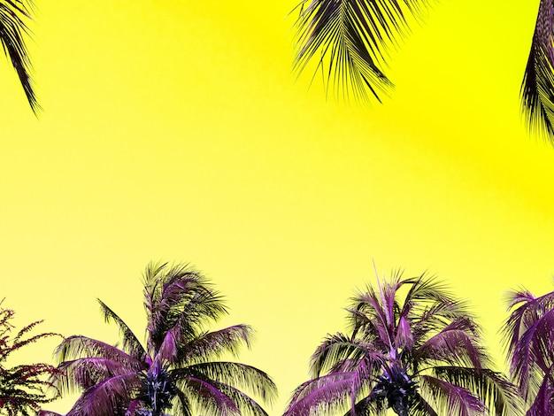 美しい黄色い空を背景に鮮やかな熱帯のヤシの木を持つ、カラフルな夏の背景。コピー スペースを持つ抽象的な最小限の不自然な豪華な背景。