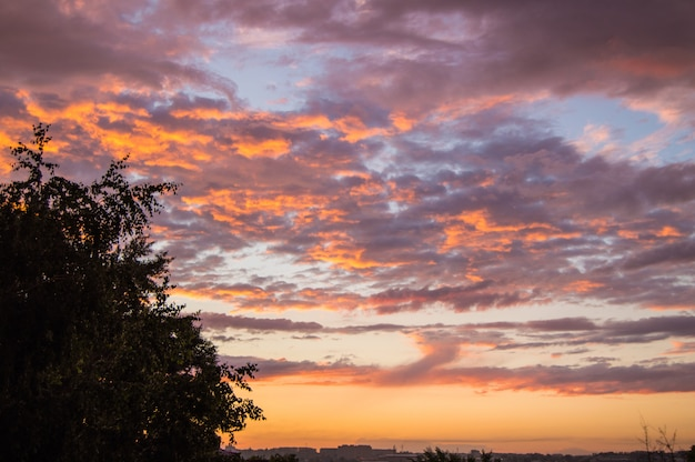 Colorful summer sunset after rain with dramatic blue and pink clouds
