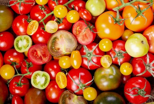다채로운 토마토, 평면도