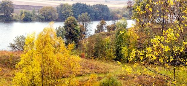 川沿いの秋の森の色とりどりの木々