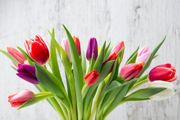 Colorful tulips on the grey surface