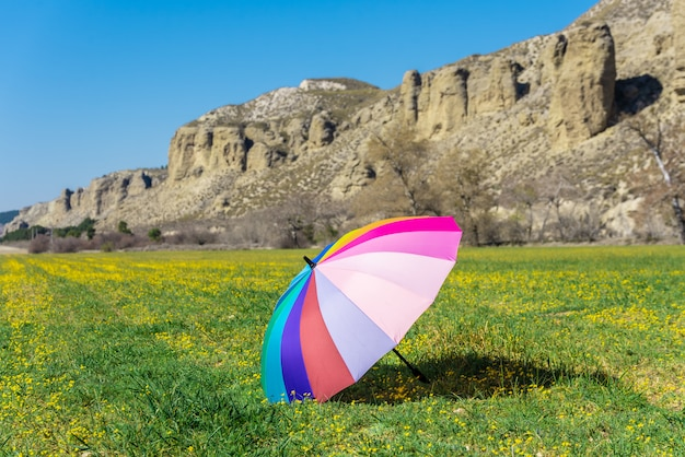 Colorful umbrella placed on the grass in a sunny day