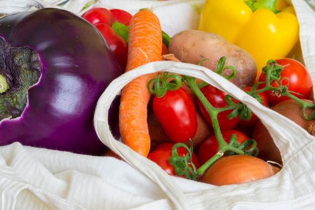 Colorful vegetables in shopping bag