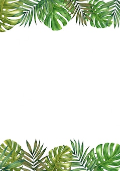 Colorful watercolor frame border with  tropical leaves.