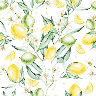 Colorful watercolor pattern with lemon fruits and flowers. illustrations.