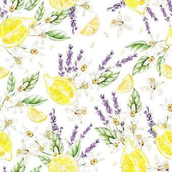 Colorful watercolor pattern with lemon fruits and flowers, lavender.  illustrations.