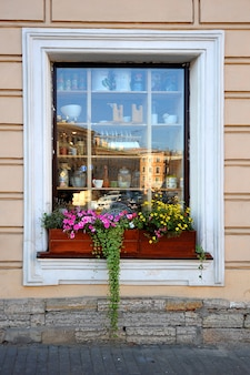 Colorful window display case with flowers and green ivy