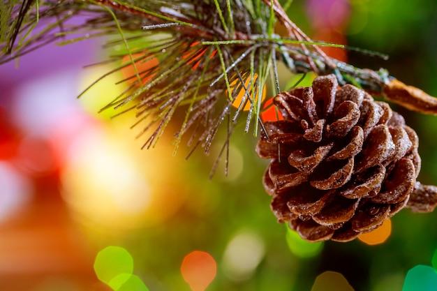 Colorfull рождественские фон с веткой шишки.