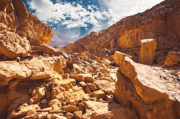 カラードキャニオンは、南シナイエジプト半島の砂漠の岩に形成された色とりどりの岩です