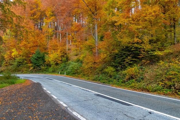 Красочная осенняя горная дорога трансфгран в румынии