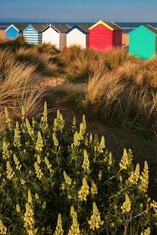 サウスウォールドのカラフルなビーチ小屋