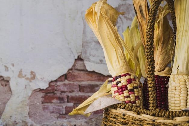 Colourful corn in basket