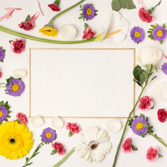 Colourful festive flowers background with horizontal frame copy space