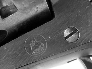 Colt closeup