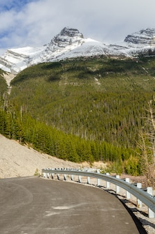 Columbia icefield highway through jasper national park, alberta, canada
