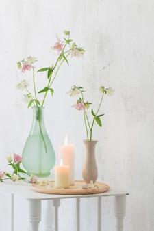 배경 흰 벽에 꽃병에 콜 럼 바인 꽃