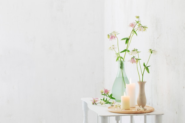 Columbine flowers in vase on white wall