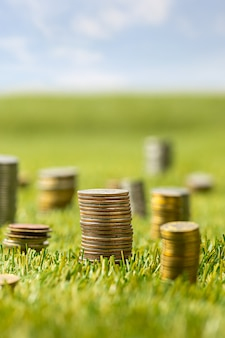 Columns of coins on grass