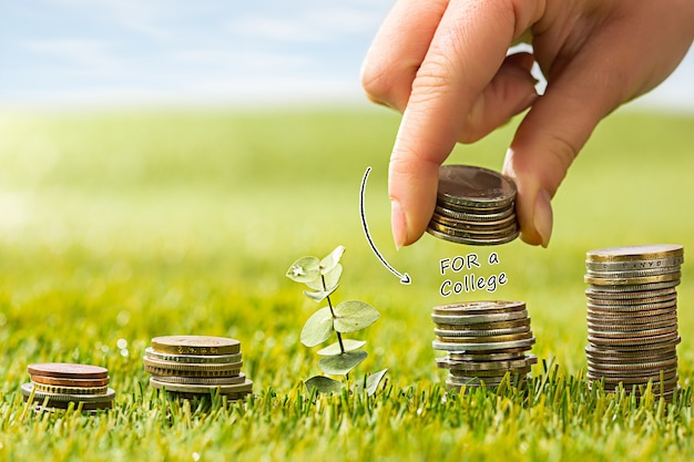 The columns of coins on green grass and female hand. saving and investment financial concept