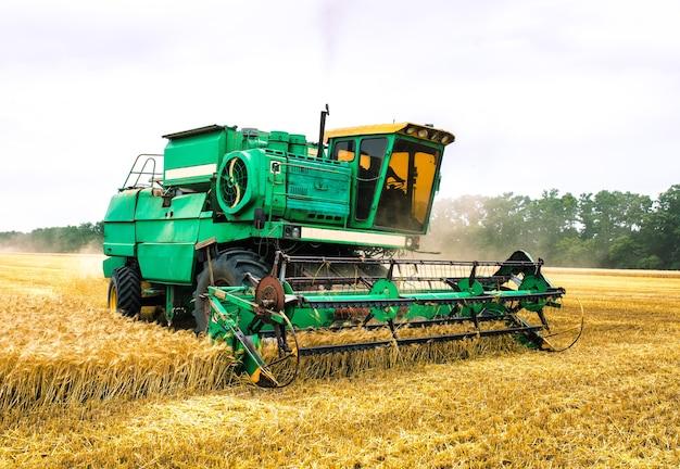 Зерноуборочный комбайн собирает спелую пшеницу. сельское хозяйство