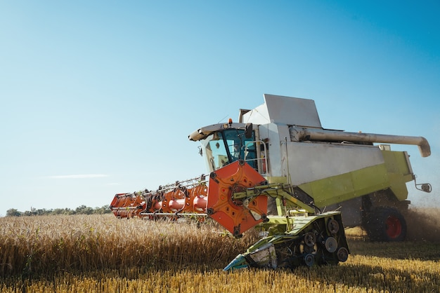 Combine harvester harvests ripe wheat background concept of a rich harvest agriculture image