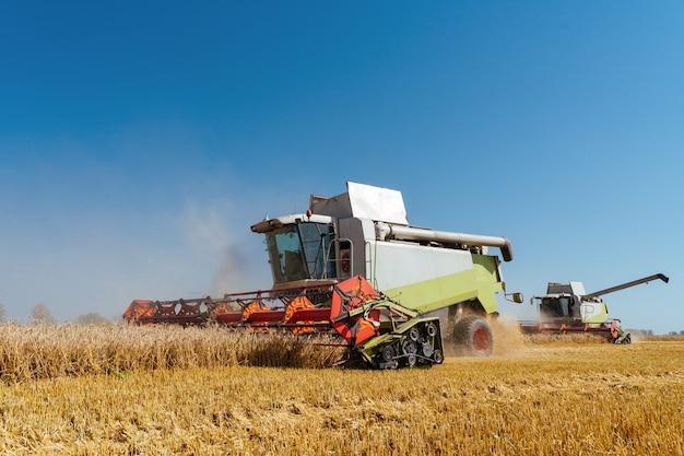 Зерноуборочный комбайн собирает спелую пшеницу - концепция богатого урожая в сельском хозяйстве
