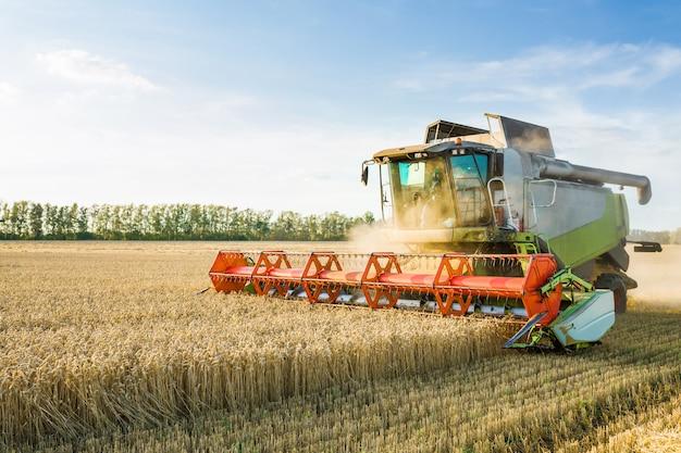 Комбайн собирает урожай спелой пшеницы. концепция богатого урожая.