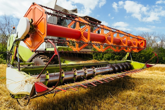 Combine harvester harvests ripe wheat. ripe ears of gold field. concept of a rich harvest. agriculture image