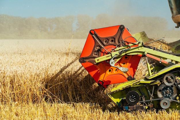Комбайн собирает урожай спелой пшеницы. зрелые уши золотого поля на фоне облачного оранжевого неба заката. . концепция богатого урожая. изображение сельского хозяйства
