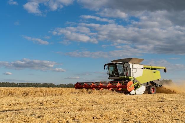 コンバインは熟した小麦を収穫します。