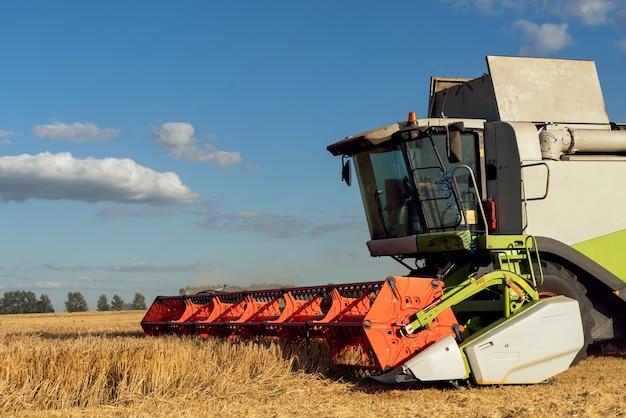 コンバインハーベスターは熟した小麦を収穫します