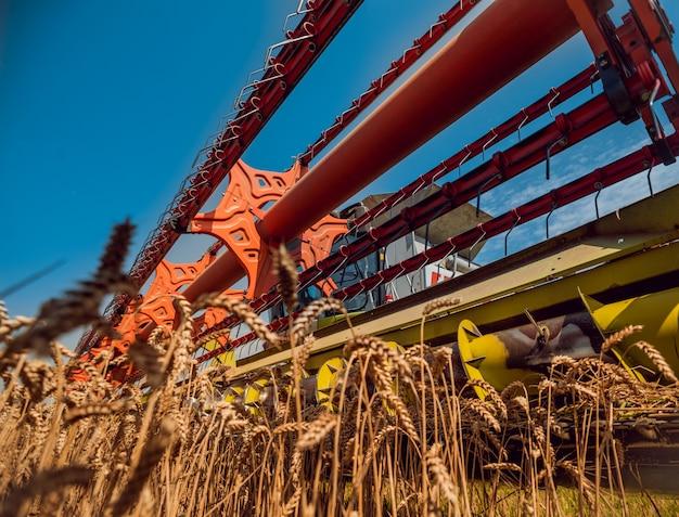 Зерноуборочный комбайн в действии на пшеничном поле. процесс сбора спелого урожая.