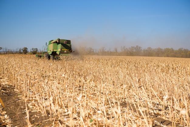 秋の日に麦畑でコンバイン。