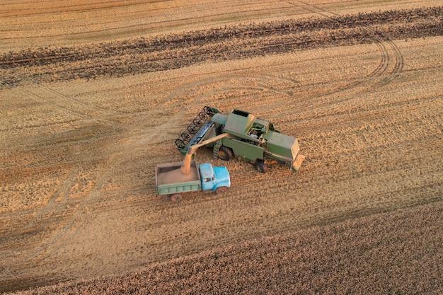 コンバインで穀物をトラックに積み込み、輸送して保管します。農場での収穫期間