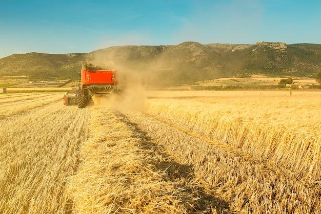 麦畑でのコンバイン