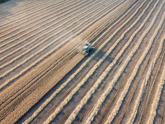 畑で小麦を収穫するコンバイン