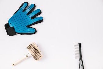 Combs near grooming glove