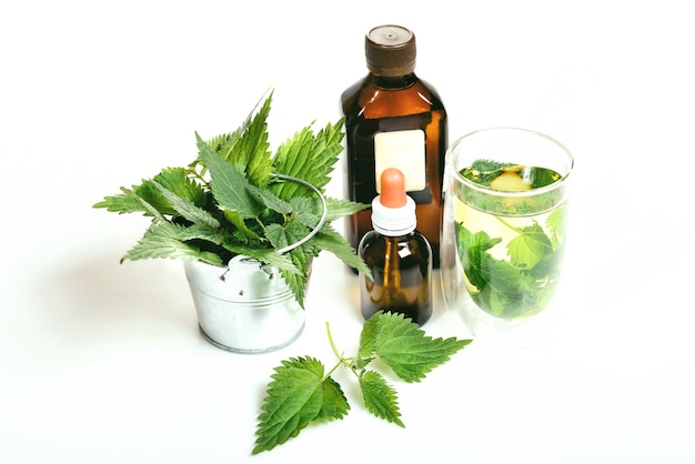 Common or stinging nettle, urtica dioica. nettle essence oil in small bottle, brewed nettle tea in glass, balsam, fresh leaves on white background, traditional medicine, healthy food, cosmetic concept