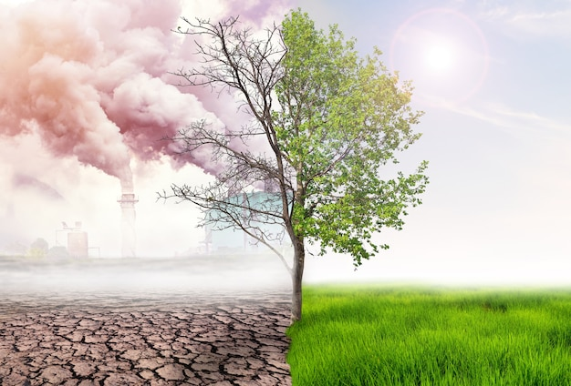 녹색 지구와 인간 행동으로 인한 대기 오염의 영향, glbal 온난화 개념, 녹색 나무 및 녹색 지구를 배경에 대기 오염이 있는 빛 및 건조한 땅과 비교