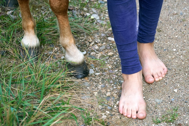人間の足と馬のひづめの比較 Premium写真