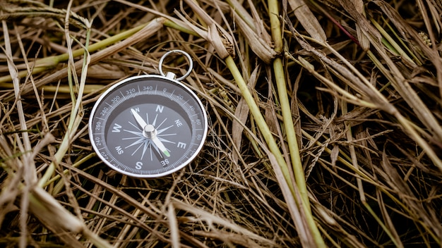 Compass on a dry straw