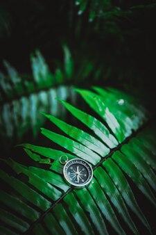 Компас на листе папоротника в яркой капризной листве тропических джунглей. концепция навигации путешествия открытия приключений.