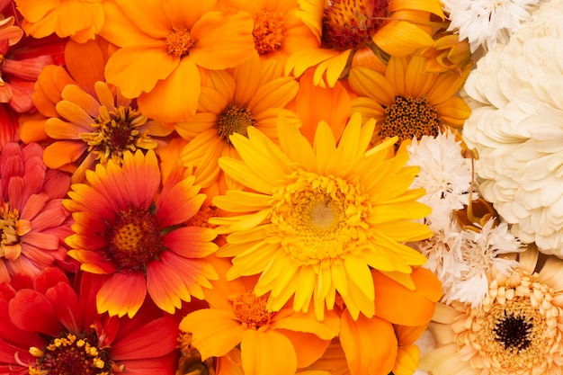 Composition of beautiful flowers wallpaper