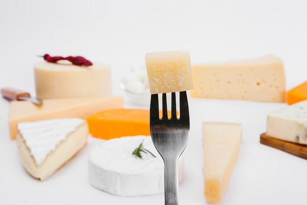 Composition of different types of cheese