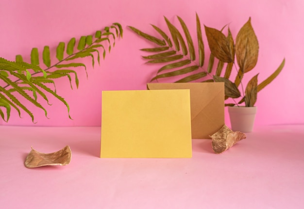 The composition features summer productsround wood on pink background with dried leaves decoration