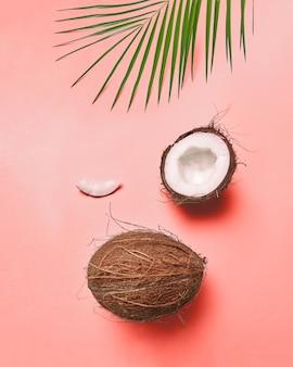 Композиция из пальмового зеленого листа и кокоса на цветной поверхности