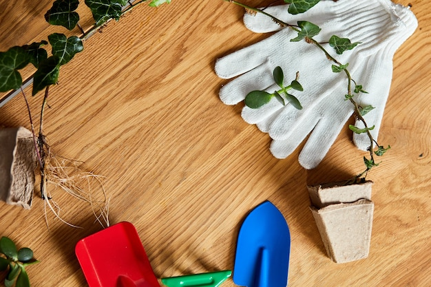 Composition of gardening tools on wooden surface