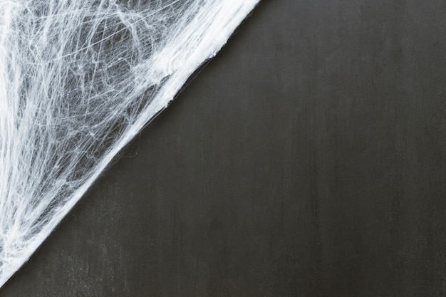 Composition for halloween with cobweb